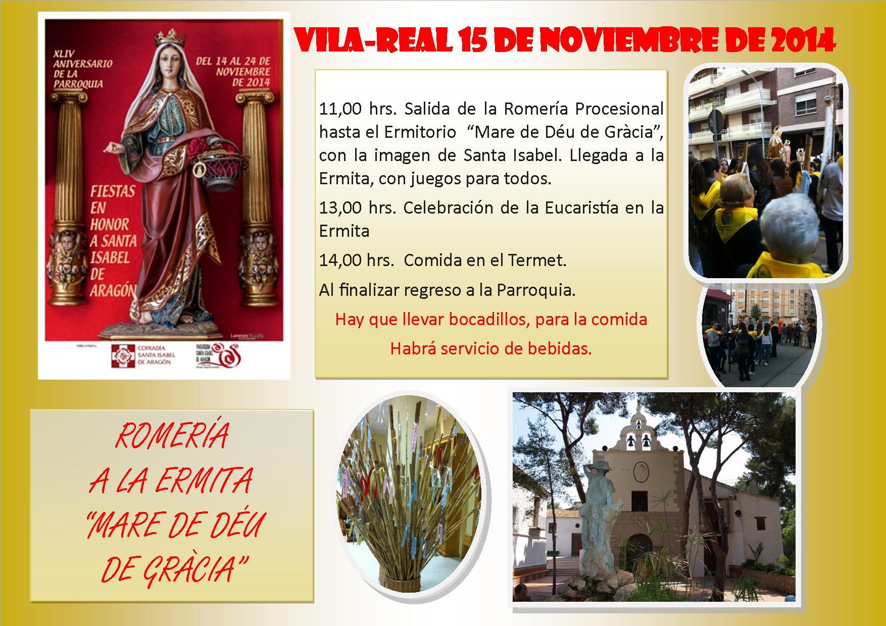 cartel romeria 2014